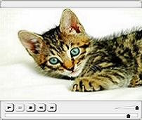 CREATE YouTube VIDEOS To Explode Your Website Traffic video player 8