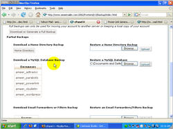 How to Manage Your Hosting Account cPanel screenshot 13